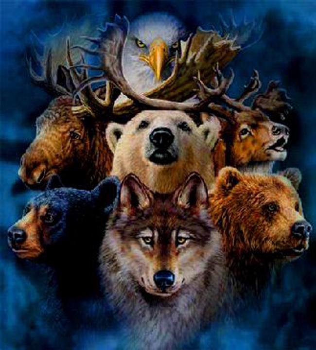 spirit-animals
