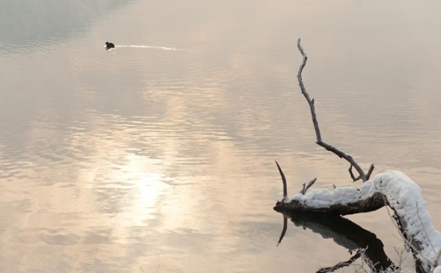 lago-grande by marta favro