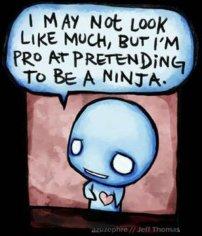 pretend-ninja--large-msg-115281810184
