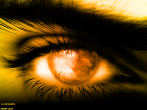 Sun_Eye