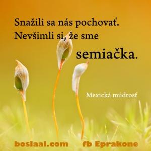 semiacka