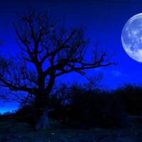 Blíži sa Modrý mesiac - jedzte!