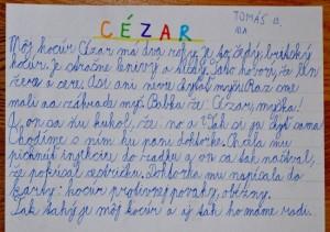 cézar
