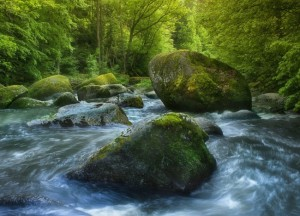 wild_water_by_kbayerl-d2q7ba4