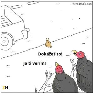 5-zajac