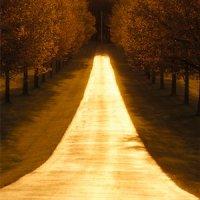 A odrazu bola cesta celá zlatá