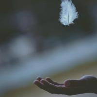Najlepšie odpúšťanie