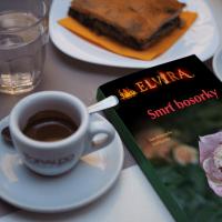 Dnes prvá kapitolka nového románu na pokračovanie Elvíra: Smrť bosorky